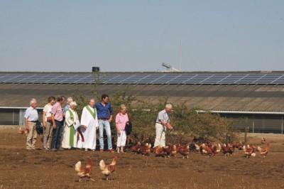 Druk bezochte zonnige boerderijdienst